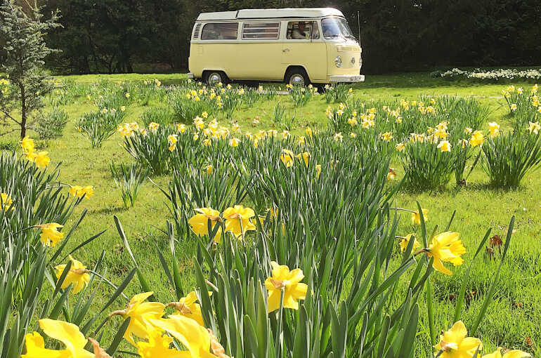 Springtime excursions